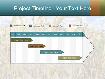 Farm PowerPoint Template - Slide 25