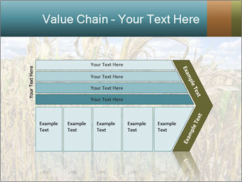 Farm PowerPoint Template - Slide 27