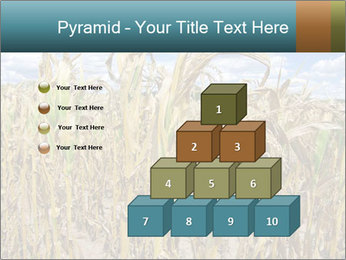 Farm PowerPoint Template - Slide 31