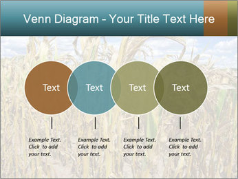 Farm PowerPoint Template - Slide 32