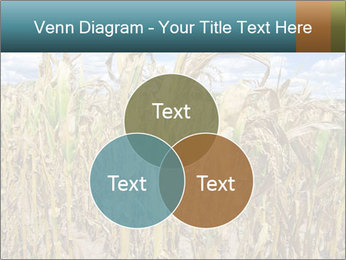 Farm PowerPoint Template - Slide 33