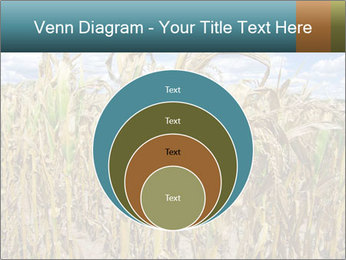 Farm PowerPoint Template - Slide 34