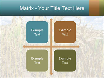 Farm PowerPoint Template - Slide 37