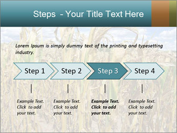 Farm PowerPoint Template - Slide 4