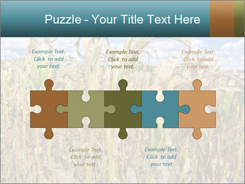 Farm PowerPoint Template - Slide 41