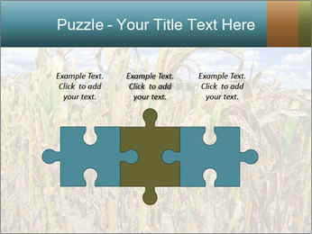 Farm PowerPoint Template - Slide 42