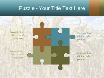 Farm PowerPoint Template - Slide 43