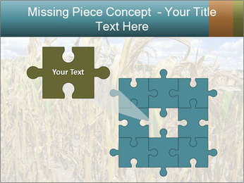 Farm PowerPoint Template - Slide 45