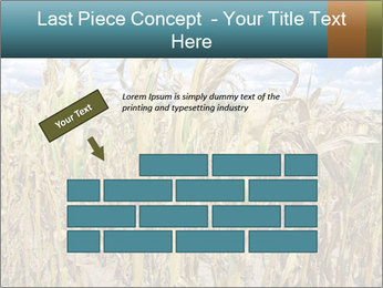 Farm PowerPoint Template - Slide 46