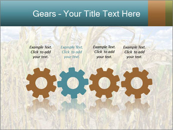 Farm PowerPoint Template - Slide 48