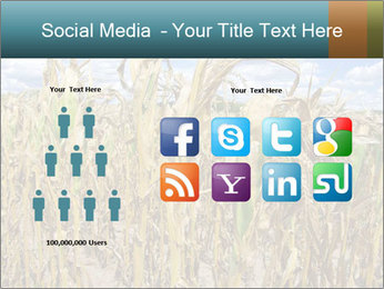 Farm PowerPoint Template - Slide 5