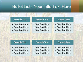 Farm PowerPoint Template - Slide 56
