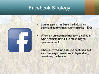 Farm PowerPoint Template - Slide 6