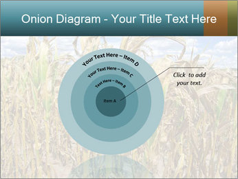 Farm PowerPoint Template - Slide 61