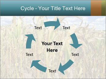 Farm PowerPoint Template - Slide 62