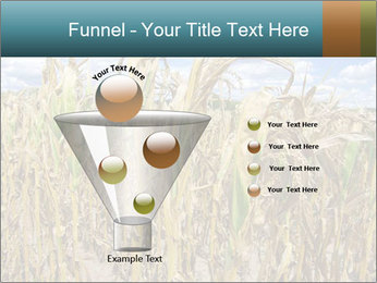 Farm PowerPoint Template - Slide 63