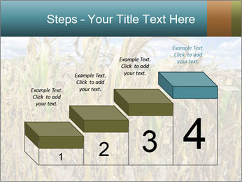 Farm PowerPoint Template - Slide 64