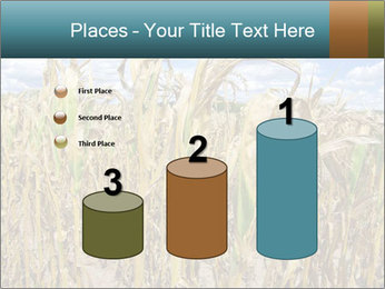Farm PowerPoint Template - Slide 65
