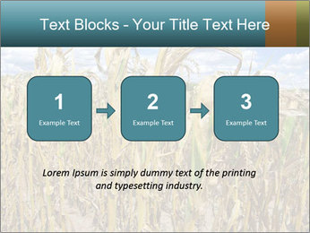 Farm PowerPoint Template - Slide 71