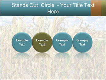 Farm PowerPoint Template - Slide 76