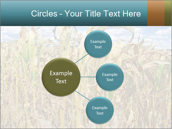 Farm PowerPoint Template - Slide 79