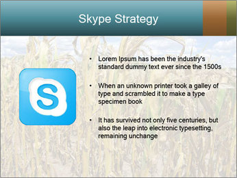 Farm PowerPoint Template - Slide 8