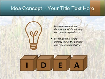 Farm PowerPoint Template - Slide 80