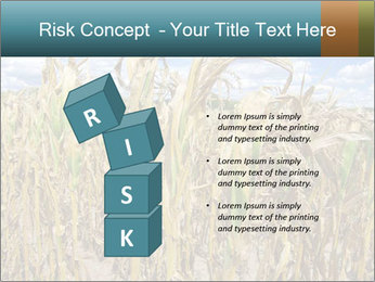 Farm PowerPoint Template - Slide 81