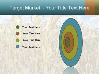 Farm PowerPoint Template - Slide 84