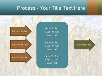 Farm PowerPoint Template - Slide 85