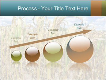Farm PowerPoint Template - Slide 87