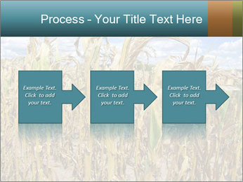 Farm PowerPoint Template - Slide 88