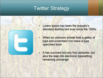 Farm PowerPoint Template - Slide 9