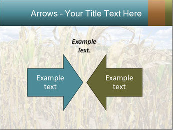 Farm PowerPoint Template - Slide 90