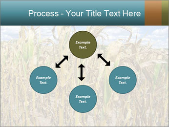Farm PowerPoint Template - Slide 91