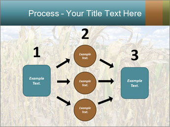 Farm PowerPoint Template - Slide 92