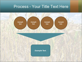 Farm PowerPoint Template - Slide 93