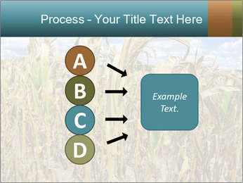 Farm PowerPoint Template - Slide 94