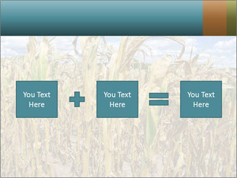Farm PowerPoint Template - Slide 95