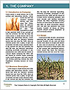 0000092721 Word Template - Page 3