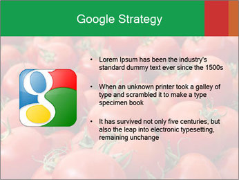 Tomatoes PowerPoint Template - Slide 10