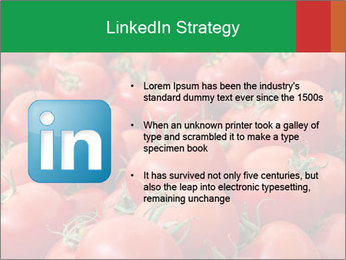 Tomatoes PowerPoint Template - Slide 12