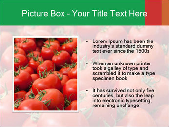 Tomatoes PowerPoint Template - Slide 13
