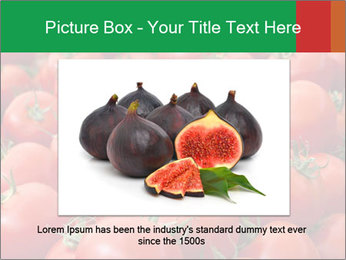 Tomatoes PowerPoint Template - Slide 15