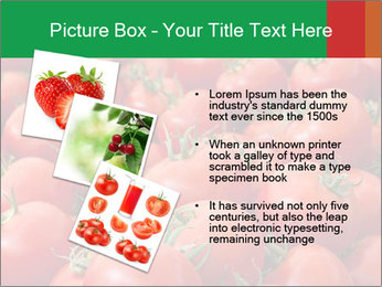Tomatoes PowerPoint Template - Slide 17