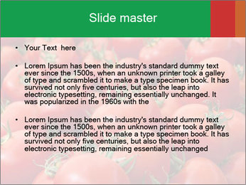 Tomatoes PowerPoint Template - Slide 2