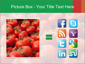 Tomatoes PowerPoint Template - Slide 21