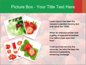 Tomatoes PowerPoint Template - Slide 23