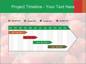 Tomatoes PowerPoint Template - Slide 25