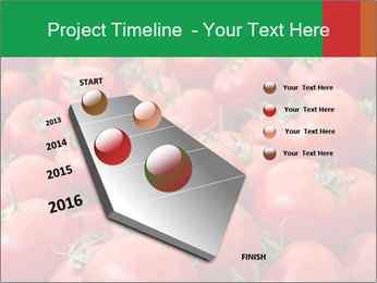 Tomatoes PowerPoint Template - Slide 26